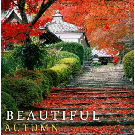 Beautiful Autumn 1080p Full HD