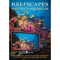 Reefscapes Nature's Aquarium